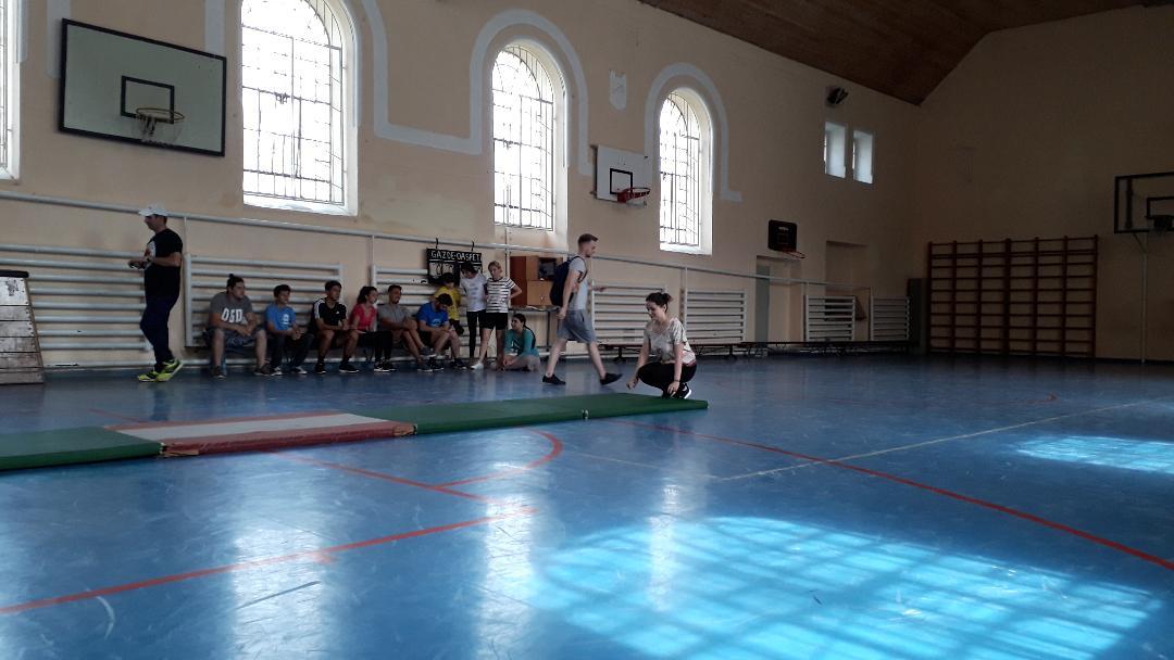 Gimnastică