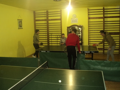 Tenis de masă